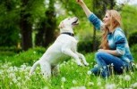 One health, One medicine: 5 ways people and their pets can stay healthy together