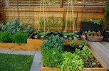 Elevate your garden game with raised beds and planter boxes