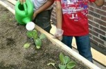Get a garden program growing at your school with these tips